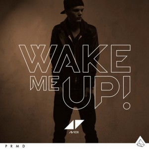 AVICII - Wake Me Up!